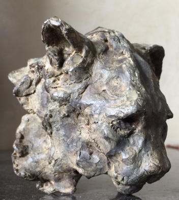 Endangered Lion Trophy / Trophée de Lion Menacé