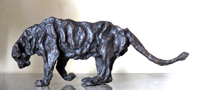 South African FIV lion/ Lion Sud Africain FIV