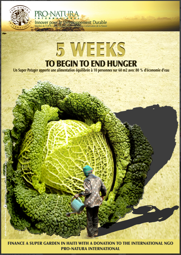 Super Vegetables Garden / PNI