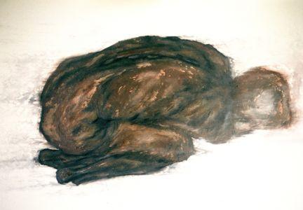 Foetus I