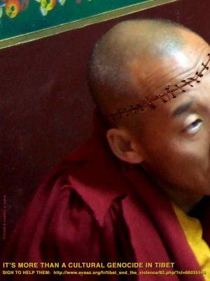 Free Tibet Moine