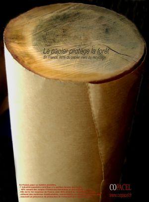 Rouleau tronc /Copacel