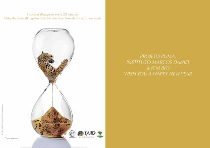 Greetings Projeto Puma / IMD