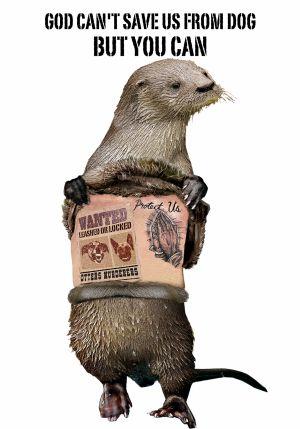 Otter & Dog / Projeto Lontra